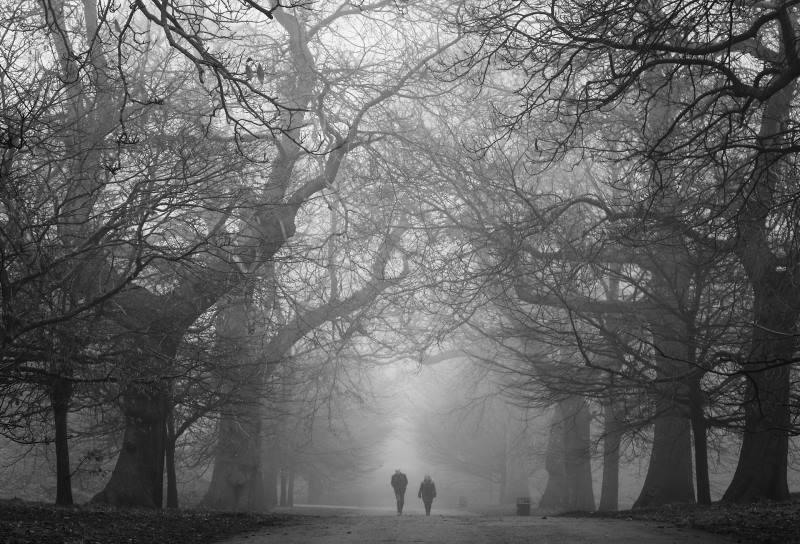 Mit Trauer Umgehen: Spazieren, reden über Gefühle